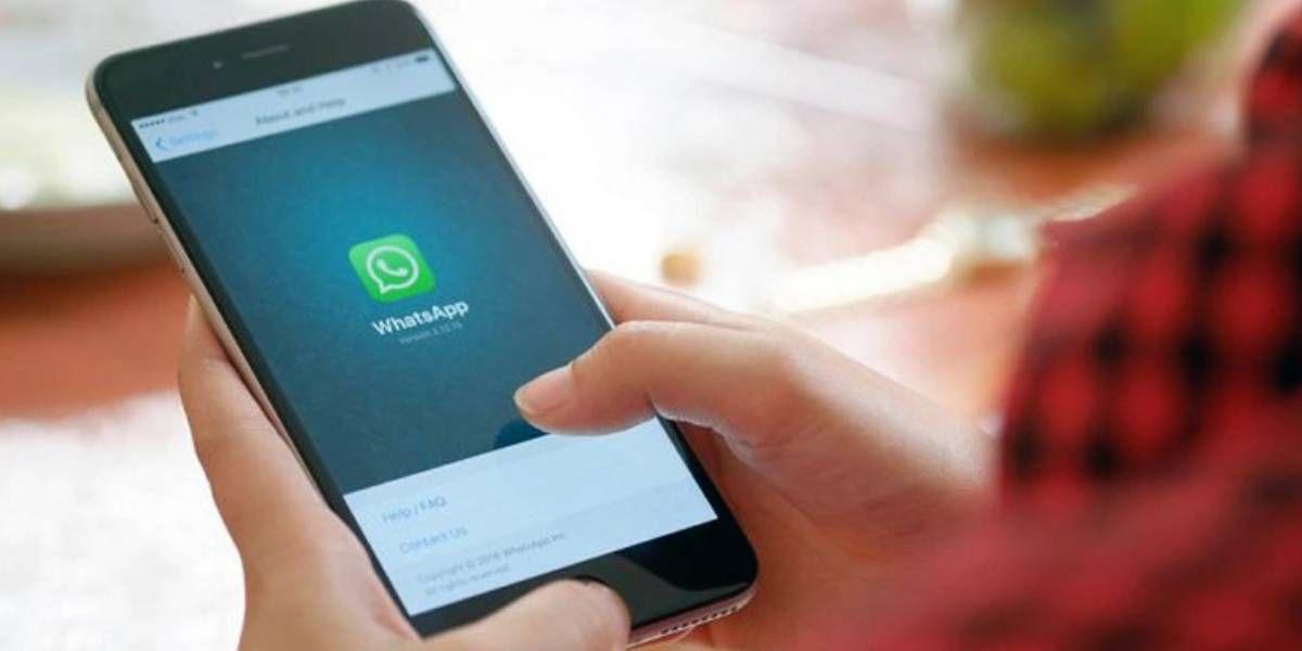 WhatsApp lanza sus emojis por la diversidad: género neutro y hasta hombres embarazados