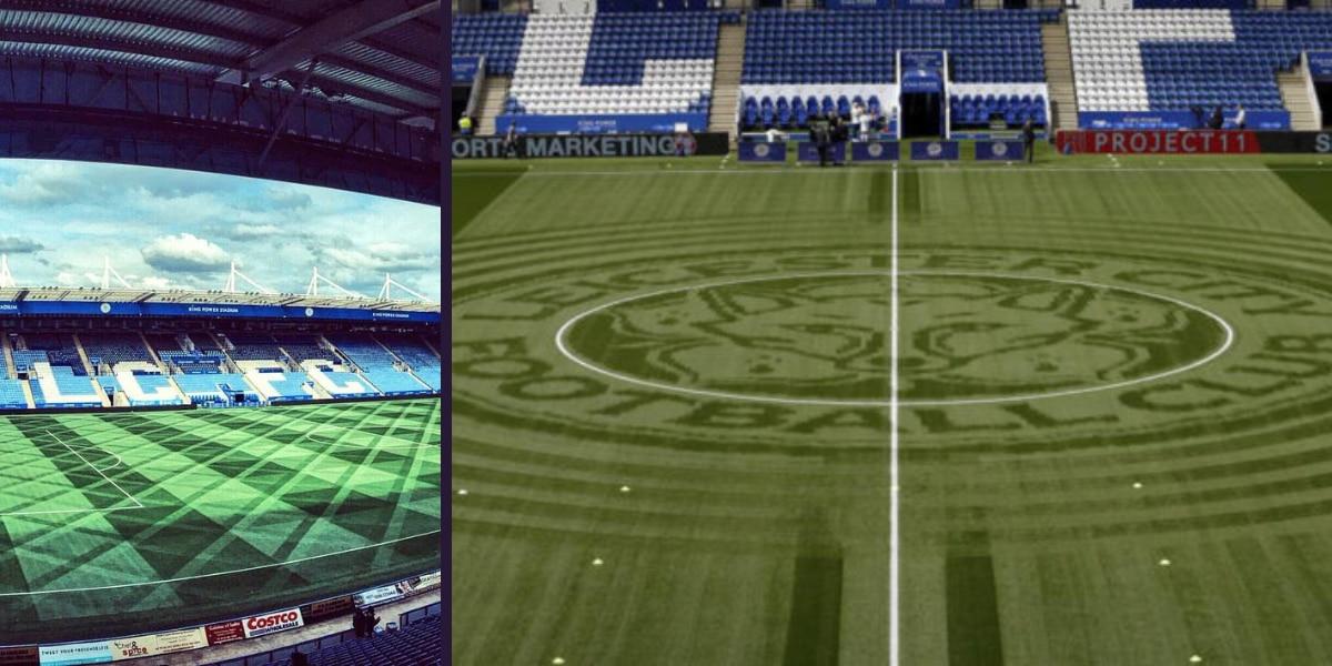Cuál es la verdadera función de las líneas en en el pasto de las canchas de fútbol